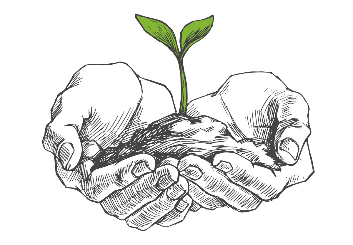 Diretores e diretoras têm poder. Como diz o livro de Eclesiastes: para plantar ou para arrancar o que se plantou (Crédito: Shutterstock)
