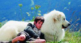 Cinema: Amizade inesperada em tempo de guerra