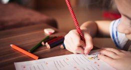 10 questões para uma educação política