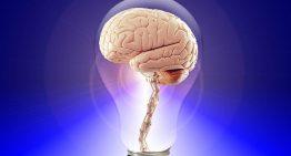 Neurociência na educação é tema de curso online
