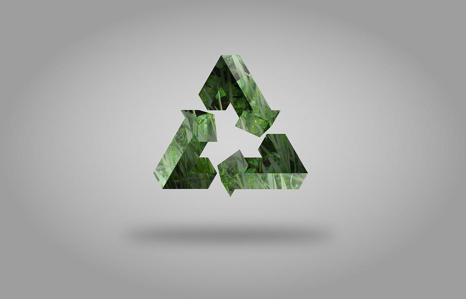 curso online abordará sustentabilidade