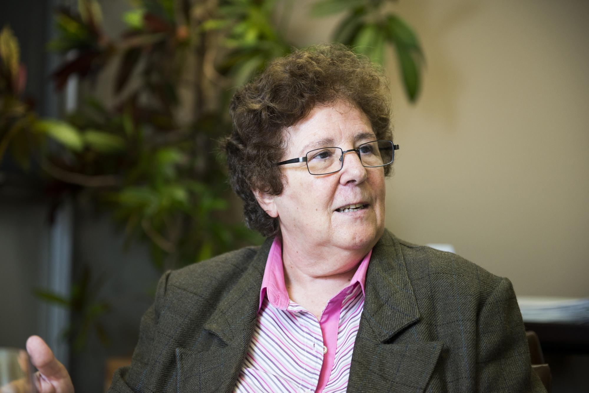 Resultado de imagem para Bernardete Angelina Gatti: Por uma política de formação de professores