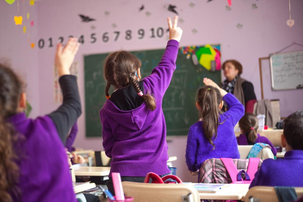 """""""Mas concluímos que todas as mudanças operadas não passavam de panaceias, ingênuas tentativas de mitigar a naturalização do insucesso operada pela velha escola. Apercebemo-nos de que o escolanovismo continuava a não garantir a todos o direito à educação"""", diz José Pacheco"""