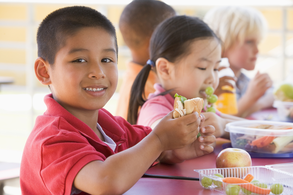 Quais leis brasileiras buscam garantir a alimentação saudável nas escolas